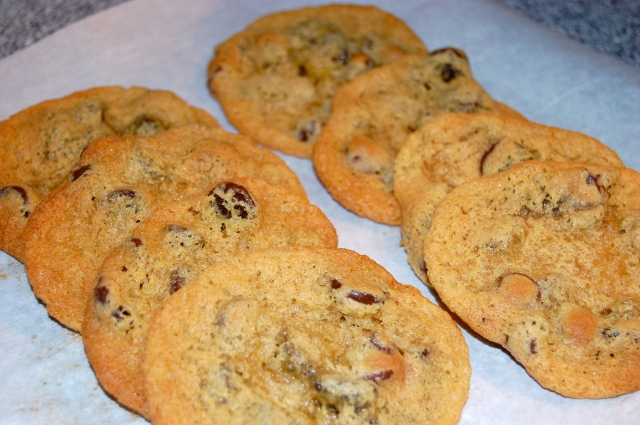 Gluten Free Chickpea Flour Chocolate Chip Cookies