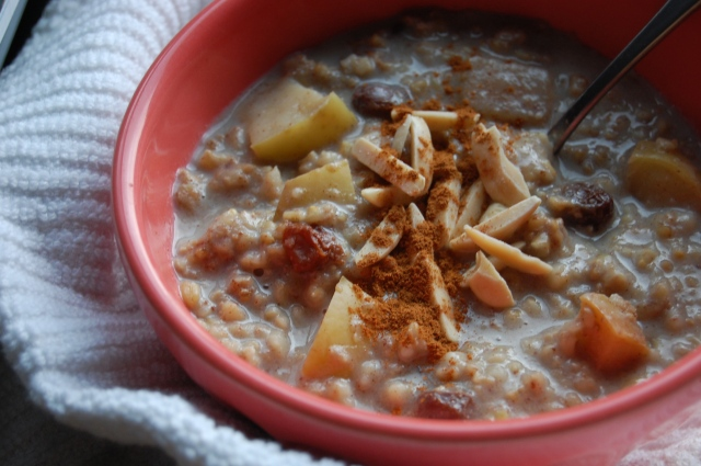 Crockpot Cinnamon Apple Steel Cut Oatmeal