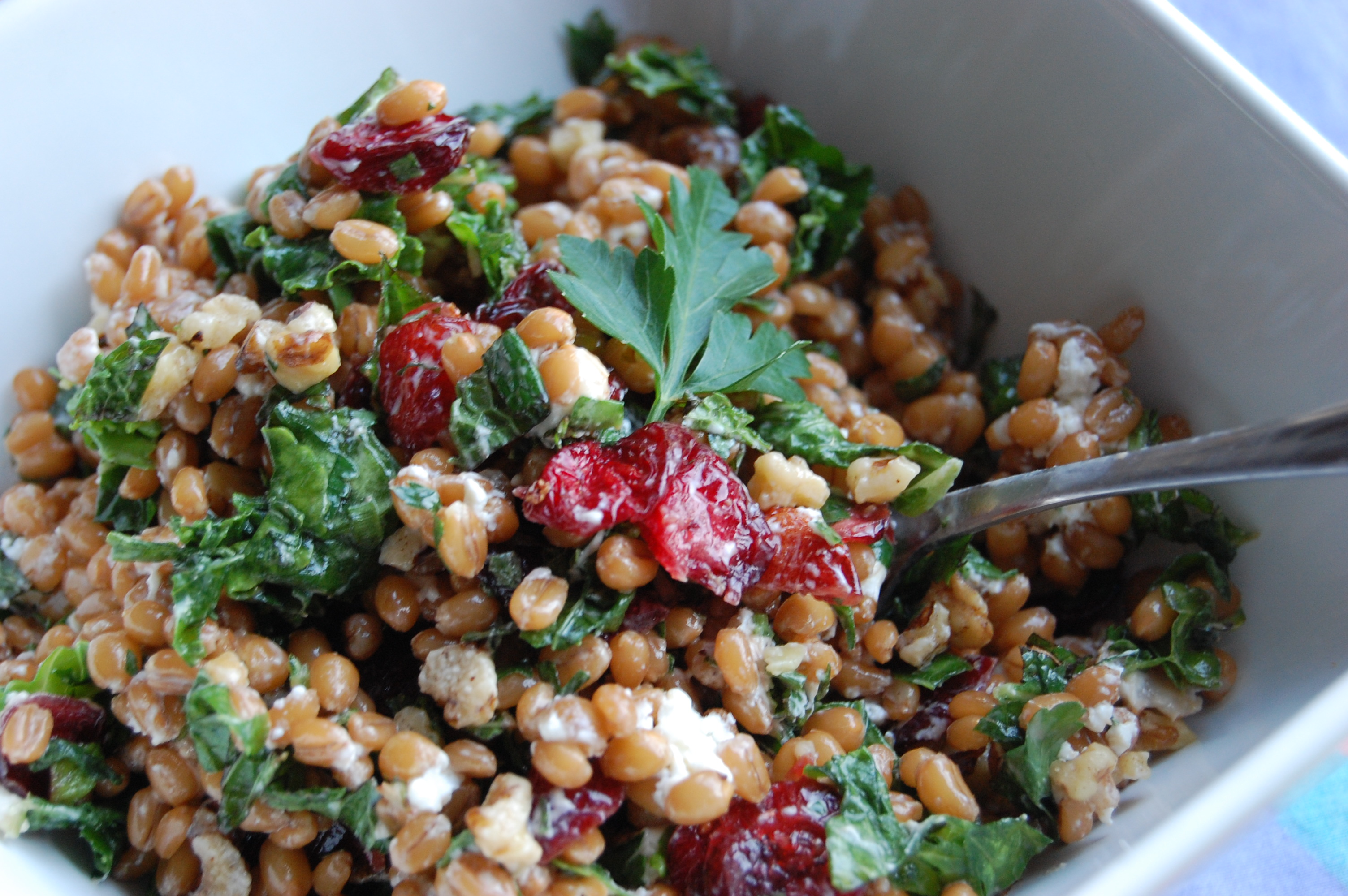 Cran-Walnut Wheat Berry Salad with Lemony Goat Cheese ...