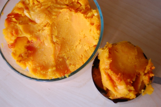 Roasted Butternut Squash Puree