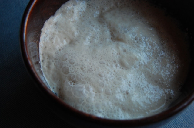 What does yeast bubbling look like