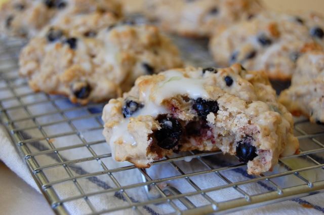 Wild Blueberry Yogurt Oat Scones